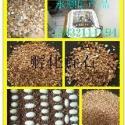 河北保温蛭石供应价格图片