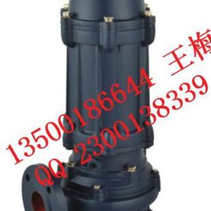 2.2KW排污泵图片