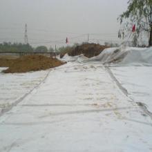 供应地下室钠基膨润土防水毯 防水防潮最新材料