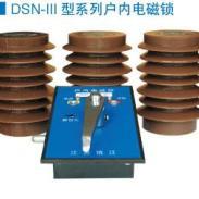 DSN系列大电磁锁网门图片