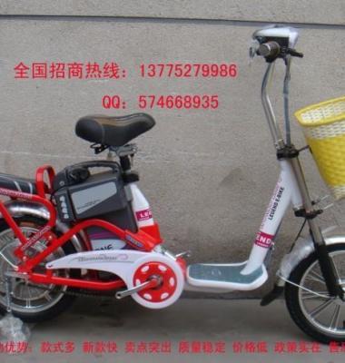 名牌电动自车图片/名牌电动自车样板图 (1)