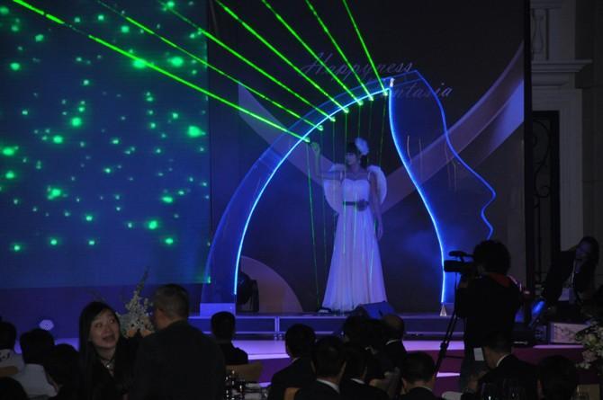 北京/佛山竖琴表演中山珠海激光竖琴 美女竖琴图片