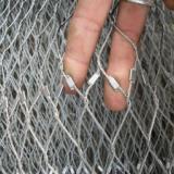 供应动物园围网/不绣钢绳网