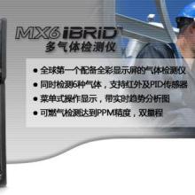 英思科MX6气体检测仪参数图片