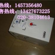 广东广州安普六类网供应商图片