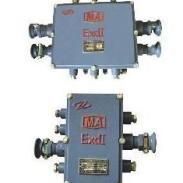 JHH10矿用本安电路用分线盒图片