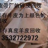 供应真皮碎皮张皮回收公司—上海回收库存张皮牛皮废皮收购站