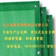 上海鑫聚莱牌阻燃安全网图片