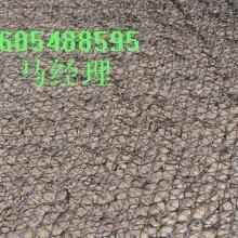 供應三維植被固土網墊.塑料建材.環保專用網墊.土工網墊三維植被網圖片