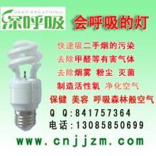 供应净化节能灯供应商负离子空气净化灯