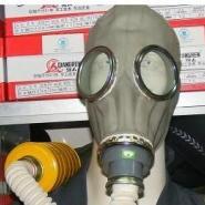 DA东莞防毒防烟面罩图片