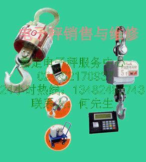 供应嘉定宝山提供直视遥控电子吊秤耐高温吊钩秤等