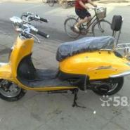 原装进口本田大龟王125cc摩托图片