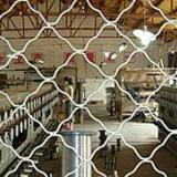 安平太行美格网有二十多台焊机发货速度及时