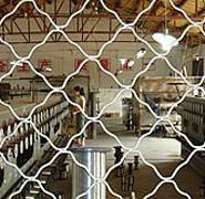 南通美格网美格网生产铝制美格网图片