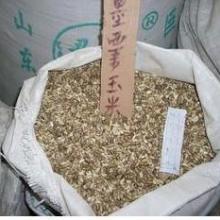 供应牧草种子墨西哥玉米种子籽粒苋种子黑麦草种子苦荬菜种子图片