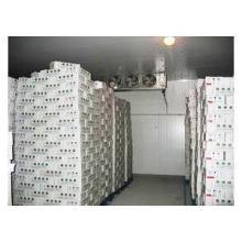 专业冷库安装广州专业冷库安装公司冷库安装服务热线批发