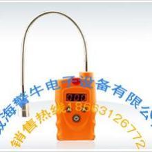 供应氨气检测仪