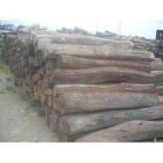 原木木材上海进口报关清关代理图片