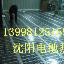 供应沈阳石墨烯电热膜辅射电采暖 沈阳远红外线电热膜电采暖批发厂家图片