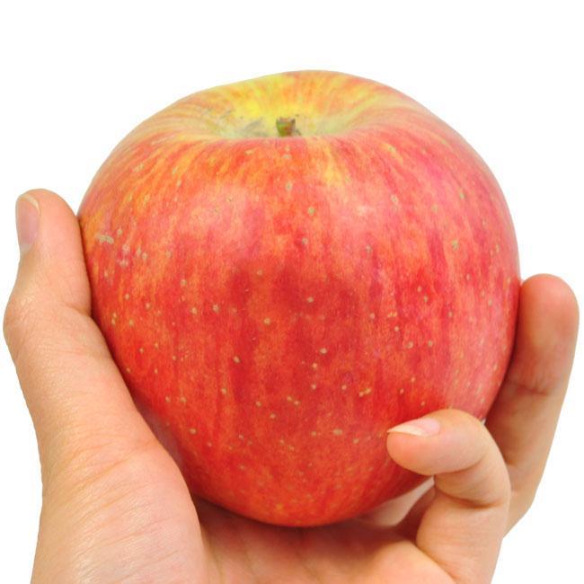 供应新疆阿克苏冰糖心苹果生产厂/阿克苏糖心苹果零售/糖心苹果多少钱