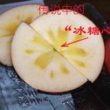 供应阿克苏冰糖心苹果批发价/特价糖心苹果/最实惠冰糖心苹果
