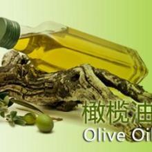 供应橄榄油的类别