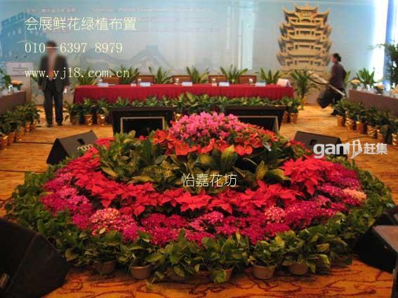 展照片展板图 展样板-绿植租摆北京怡嘉鲜花贴鲜花花坊v照片图片素材图片