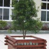 供应打造中国最好的防腐木湖南省长沙市华景防腐木业园林景观有限公司