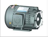 供应油泵专用电机批发