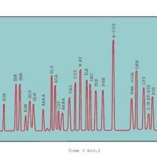 供应液相氨基酸分析18AA19AA,氨基酸分析检测包