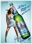 青岛啤酒11度图片