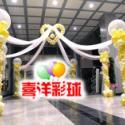 气球造型批发2010新款上市图片