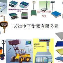 供应天津ACS电子秤/天津OCS吊秤/天津TCS地秤