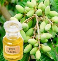 供应优质橄榄油
