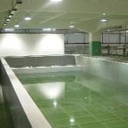 罗湖防腐水池工程承接图片
