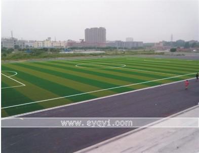 重庆球场地坪学校橡塑胶跑道图片 重庆球场地坪学校橡塑胶跑道样板图
