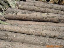 供应木材进口单证图片