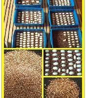 供应21蛭石粉膨胀蛭石粉
