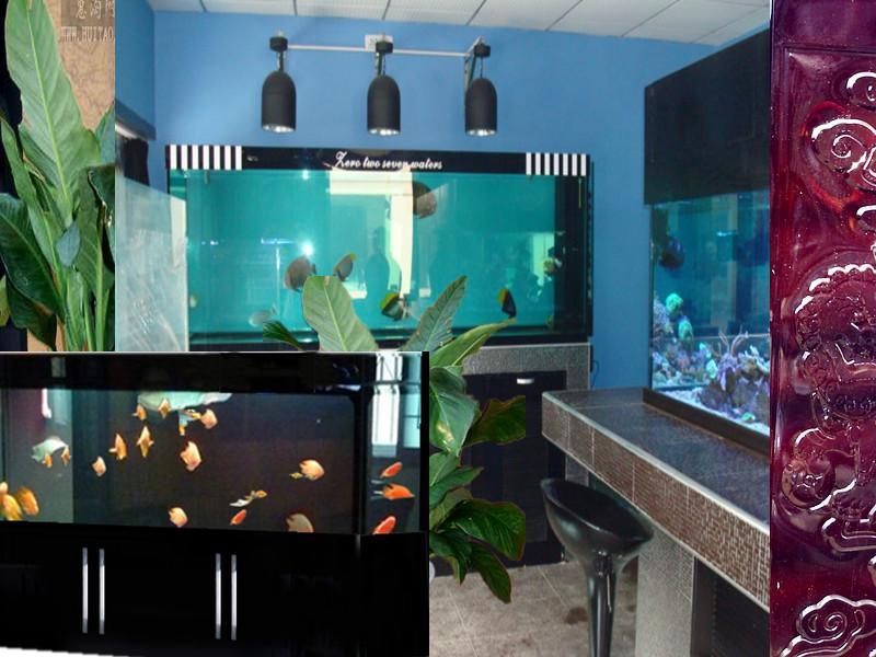 武汉汉西鱼缸图片描述 鱼缸水草布景之 高清图片