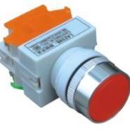 供应Y090(LAY37)-11BNZS平钮自锁按钮 开孔22MM
