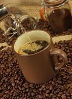 巴西可可豆咖啡豆专业进口清关代理