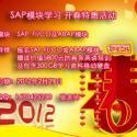 供应北京专业SAP培训,北京专业sap顾问培训。