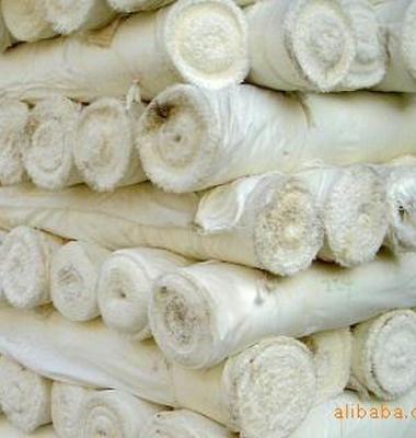 磨毛布坯布图片/磨毛布坯布样板图 (1)