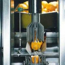 柑橘类榨汁机