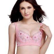 雅致桃粉金线蕾丝刺绣保健挺拔文胸图片