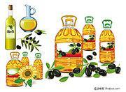 东莞沙田港如何进口橄榄油销售