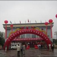 杭州婚庆气球拱门-出租租赁电话多少