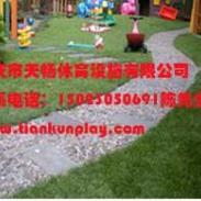 重庆江北区塑料人造草坪图片