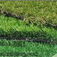 供应巴南区便宜的人造草坪,重庆南岸区人造草坪,双桥区哪里有卖人造草坪,重庆绿化装饰人造草坪产品
